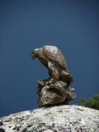 Bronze aigle posé (3)